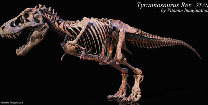 В Вашингтонском музее появится скелет тираннозавра