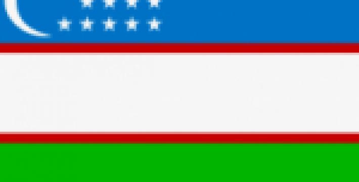 Россия хочет ввести визовый режим с Узбекистаном