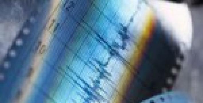 Произошло несколько землетрясений в короткий промежуток времени и в разных точках земного шара