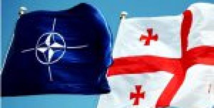 Грузия не исключает создания с партнерами из НАТО совместных военных предприятий