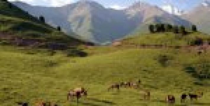 Путешествие в Киргизию — звезды, горы, природа. ВИДЕО
