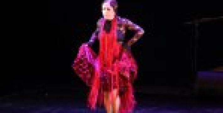 XII Международный фестиваль фламенко «¡Viva España!» объявляется закрытым!