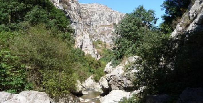Где на Кавказе будет проходить граница Таможенного союза?
