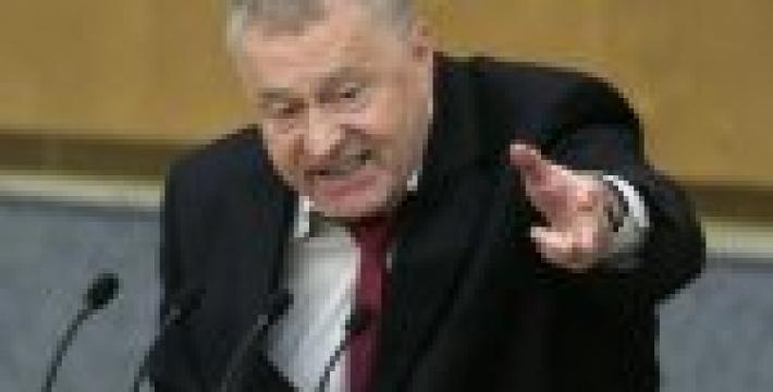 Жириновский предложил МИД Польши поделить оставшуюся Украину