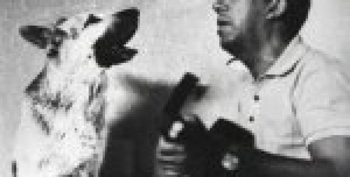 Памяти Юрия Никулина: 17 лет назад не стало выдающегося артиста
