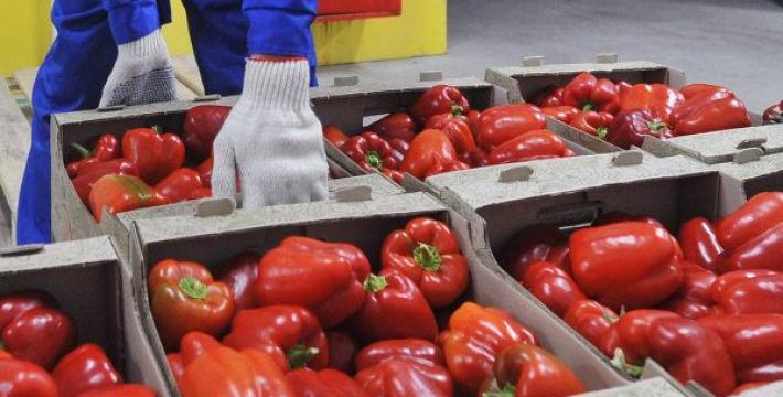 В Россию не пустили 200 тонн овощей из Белоруссии и масло с Украины