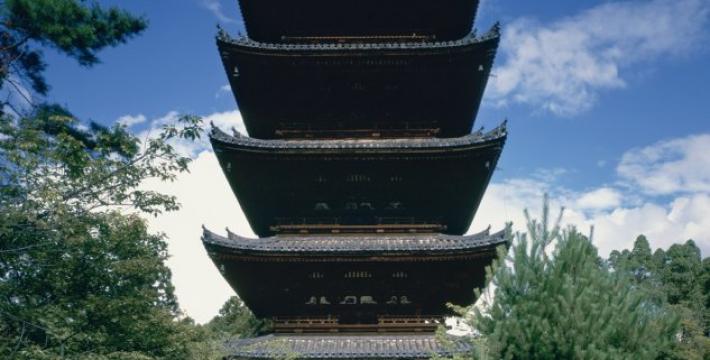 Выставка японского фотографа открывается в Краснодаре