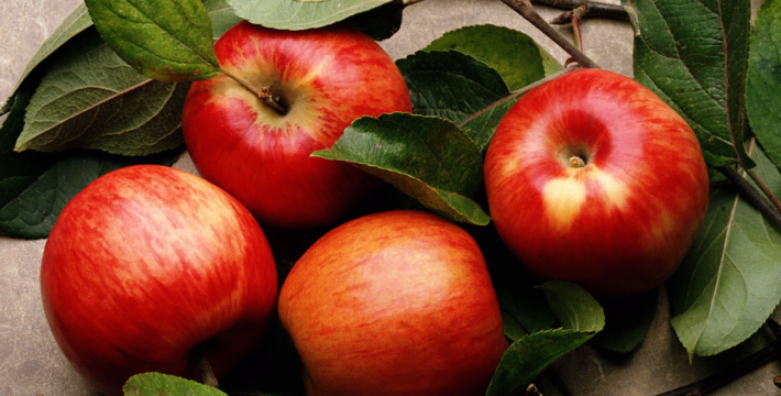 Что нельзя делать на Яблочный Спас?