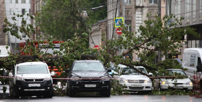Ураган вМоскве: первые жертвы