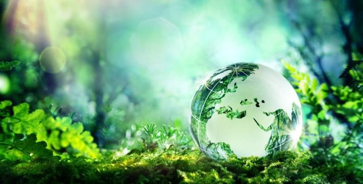 «Не защитив природу от самих себя, мы нарушим баланс мироздания»