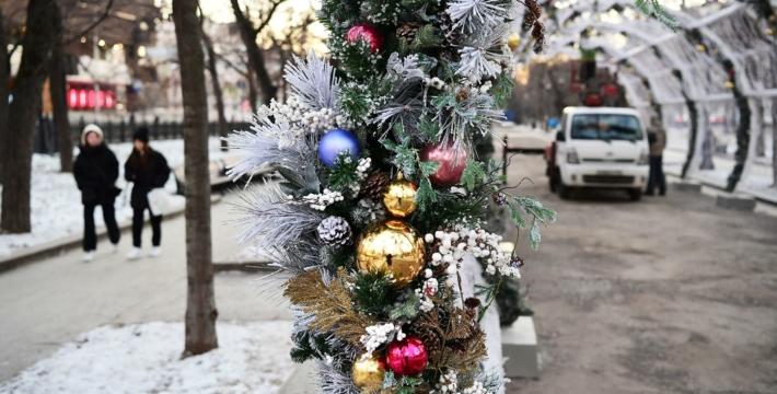 Все российские регионы объявили 31 декабря выходным